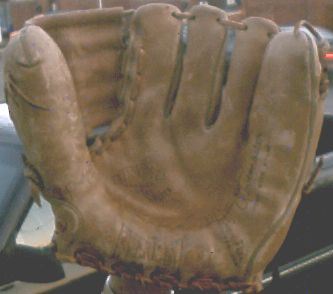Everlast Glove Front