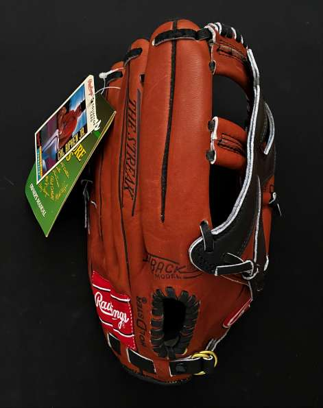 Cal Ripken Jr Rawlings RBG2131R Back